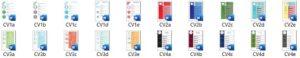 Veel-soorten-cv-templates