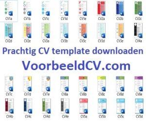 VoorbeeldCV-336x280-logo