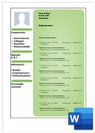 Voorbeeld CV serie 3